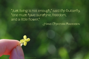 One Must have a Little Flower quote by Hans Christian Andersen - photo by lostcarrot.com